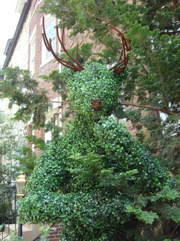 Topiary in D.C.