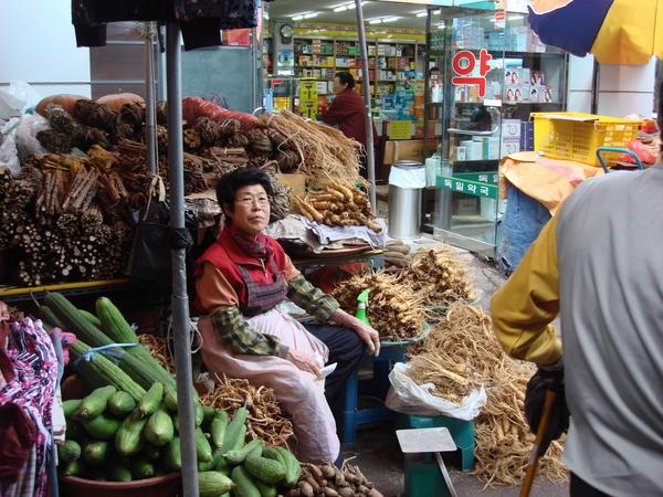 IAC 2009 in Daejeon, Republic of Korea